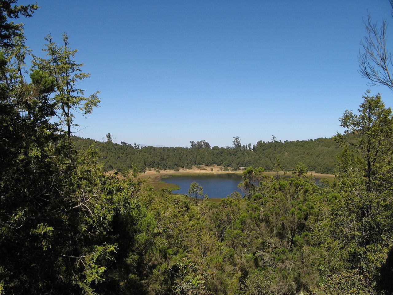 Zuquala Lake