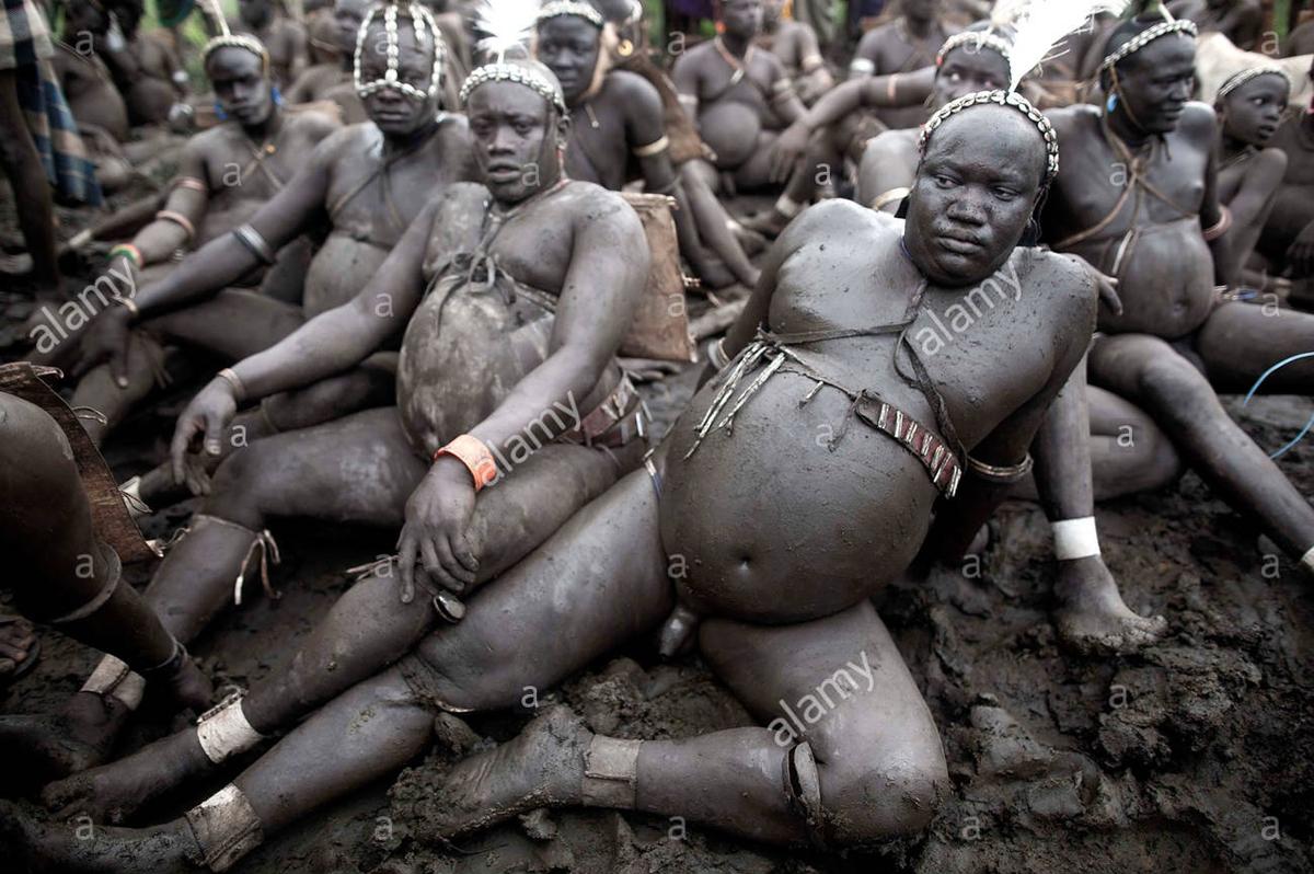 Bodi Tribe